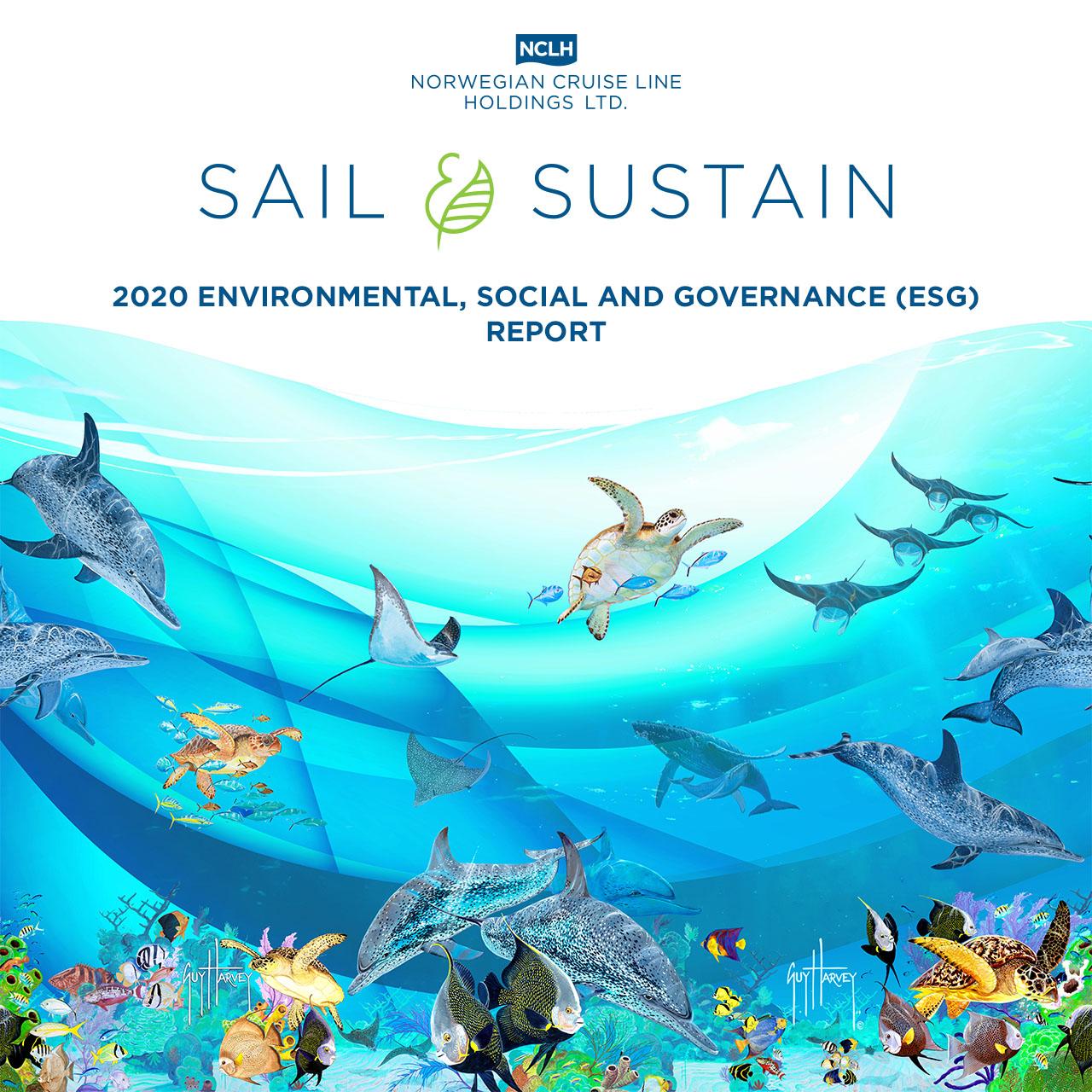 Informe medio ambiental